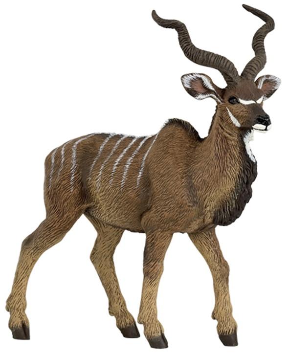Antilope Kudú-0